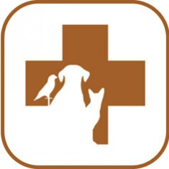 CPAH Mobile App